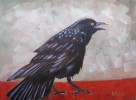 Crow on Red Table